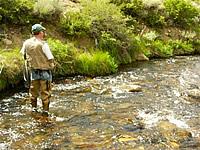 Fishing bishop creek ca for Bishop ca fishing
