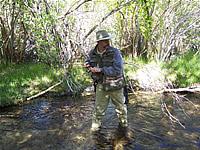 Fishing bishop creek ca for Bishop creek fishing
